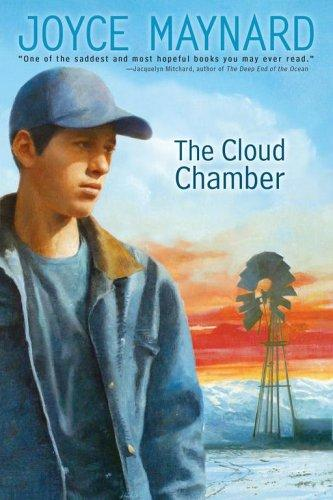 The Cloud Chamber (Anne Schwartz Books)