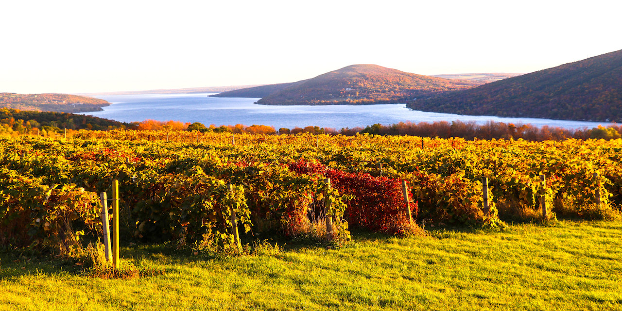 Fall morning in the Finger Lakes (photo)